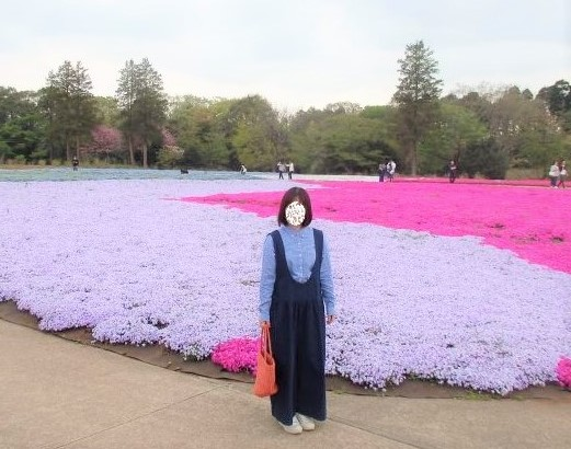 芝桜2.jpg