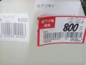 P5036667_400.jpg